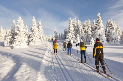 Cross-country skiing on perfectly groomed cross-country trails